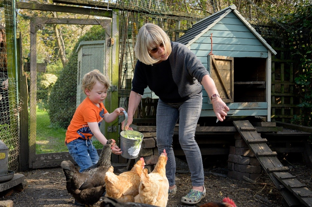 An older person feeds poultry in a yard helped by a toddler